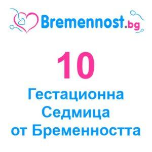 10 гестационна седмица