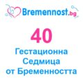 40 гестационна седмица