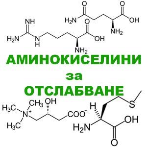 аминокиселини за отслабане