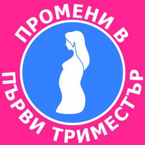 промени в първи триместър на бременността