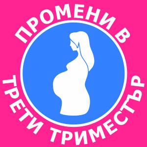 промени в трети триместър на бременността