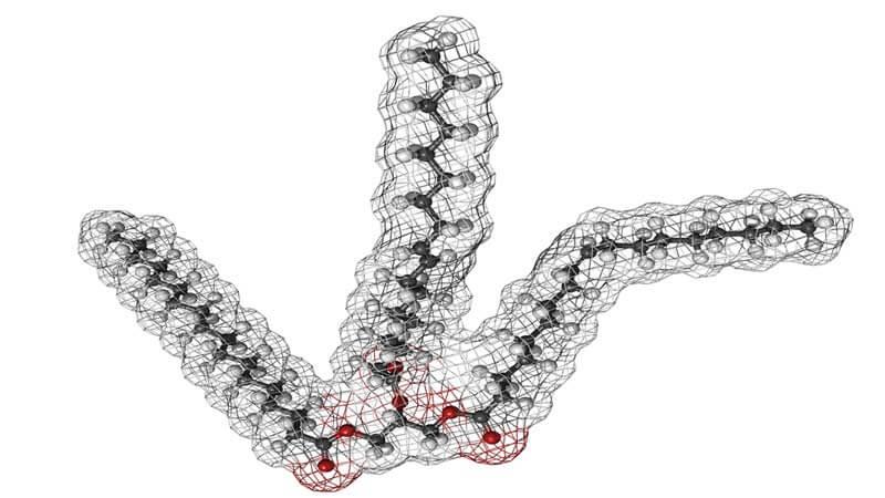 триглицериди