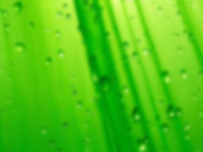 зелени води при раждане