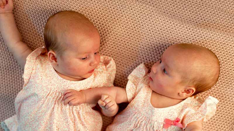 еднояйчните близнаци