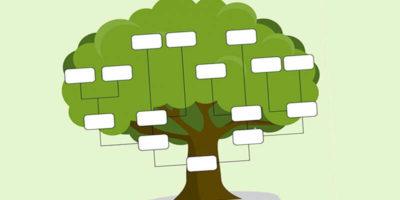 как се прави родословно дърво